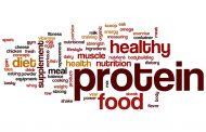 آیا فقط پروتئین ها و آمینو اسیدهای آنها واحد های ساختمانی هستند ؟