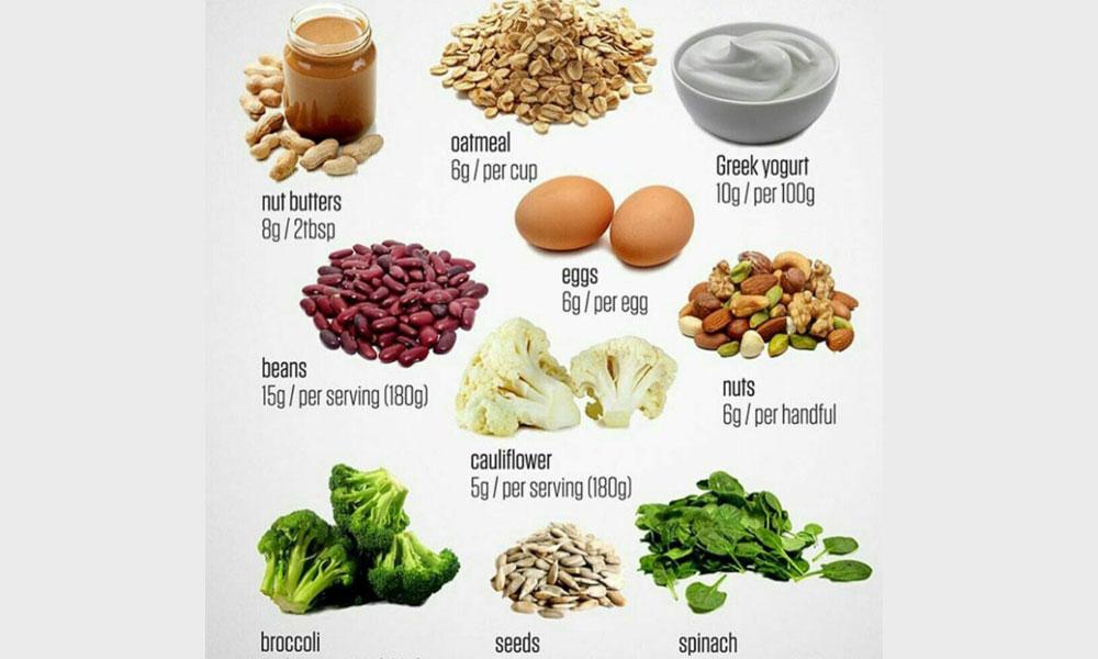 انواع پروتئین