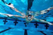 چگونه شناگر از پس مسابقات مقدماتی، نیمه نهایی و نهایی برمی آید؟