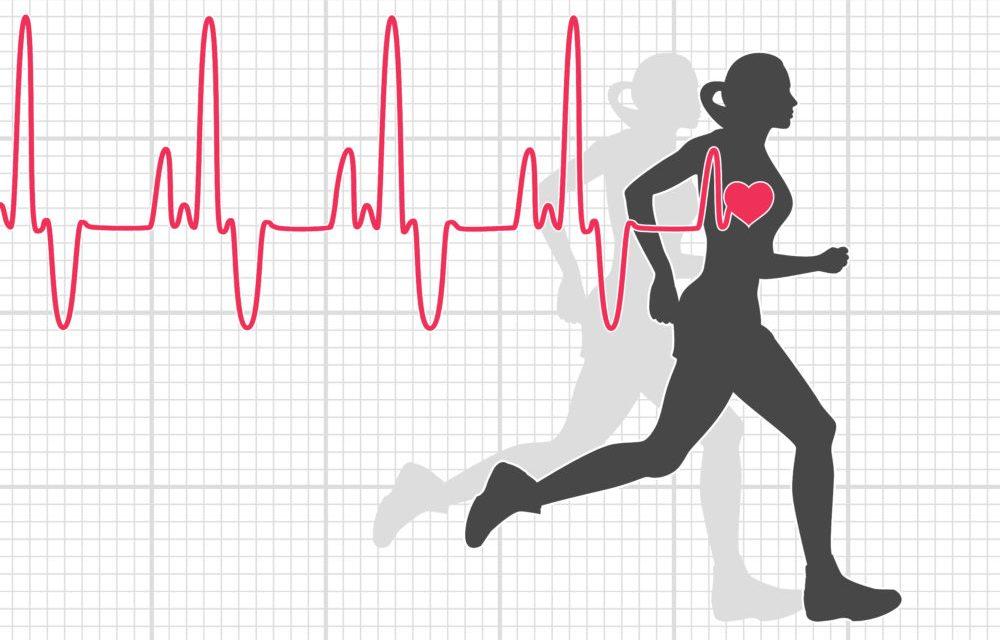 ضربان قلب و پاسخهای ضربان قلب به حرکات و تمرین